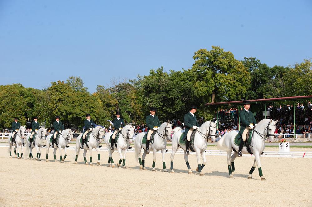 Espectáculo de caballos en Lipica