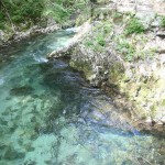 Actividades en Eslovenia