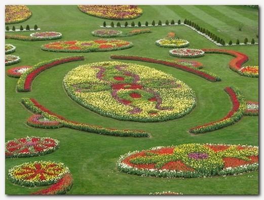 tulipanov parter - novost 2012
